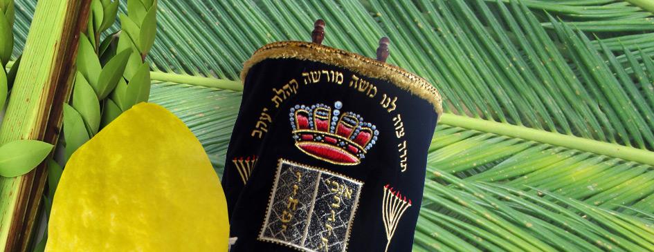 Sukkot-and-Simchat-Torah_Banner_wide.jpg