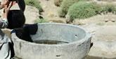 Brunnen und ihre Bedeutung