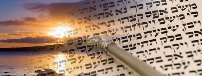 Der Standpunkt des Rebbe: Das Torastudium