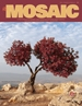 Mosaic Fall Magazine 5776-2015