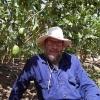 מגדל האתרוגים: ראיון עם הרב נחום לוריא