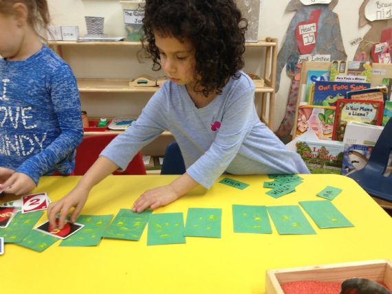 sequencing frogs