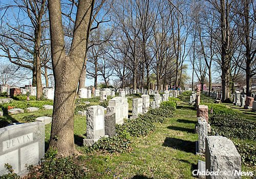 The Chevra Kadisha Cemetery in St. Louis (Photo: Chris J. Cross)