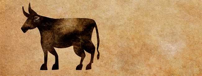 Chassidic Stories: The Rabbi and the Ox