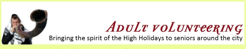 adult-volunteering-banner.jpg