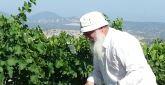 """""""מבריך על פי הקבלה"""": משה אלון מייצר יינות אותנטיים בצפת"""
