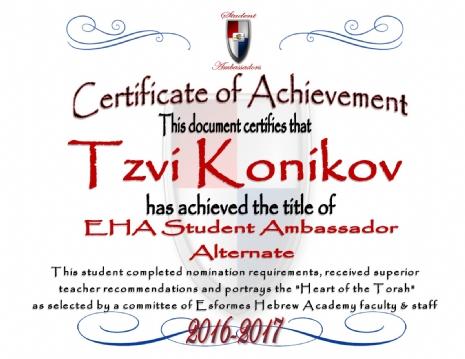 T.Konikov-Certificate.jpg