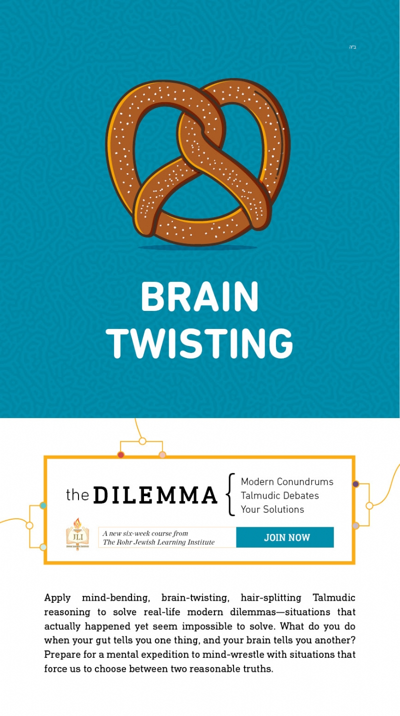 the dilemma_flier.jpg