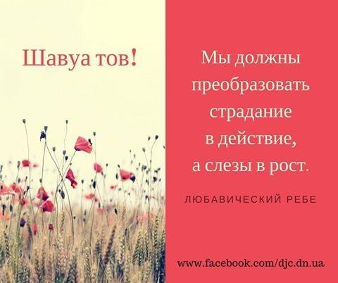 16938977_737180153122883_666122482446901956_n.jpg