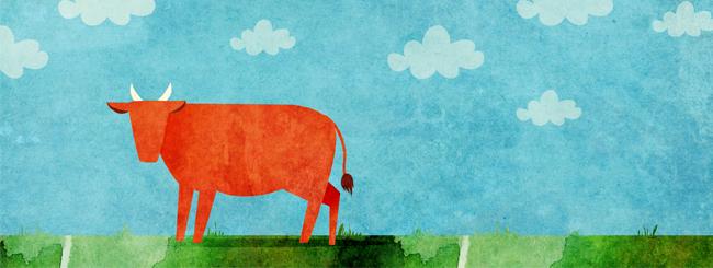 Аудио- и видеолекции по недельной главе: Корова и дети