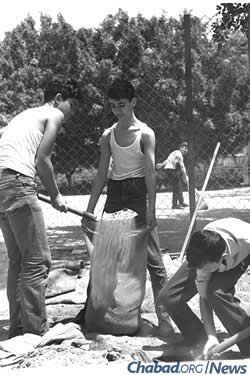 Elementary-school students fill sandbags for their shelter in Tel Aviv in advance of war. (Photo: Israel Government Press Office)