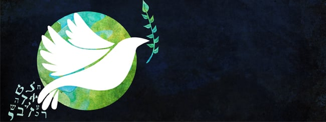 Questions & Answers: Why Is the Olive Branch a Symbol of Peace?