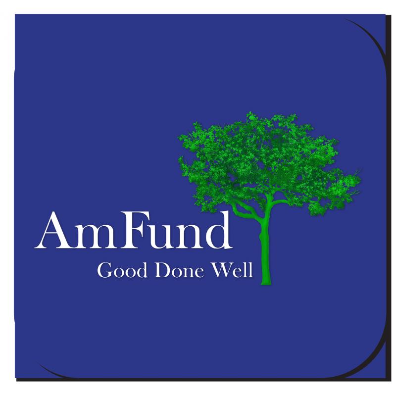 AmFund-Logo-Build Blue Background_2017.png