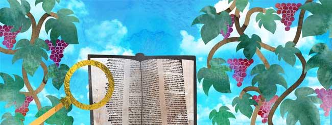 Видео - JewishTV.ru: Утренние благословения и молитва. Урок 15