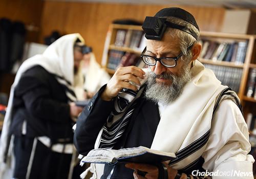 The rabbi prays Shacharit. (Photo: Shimi Kutner)
