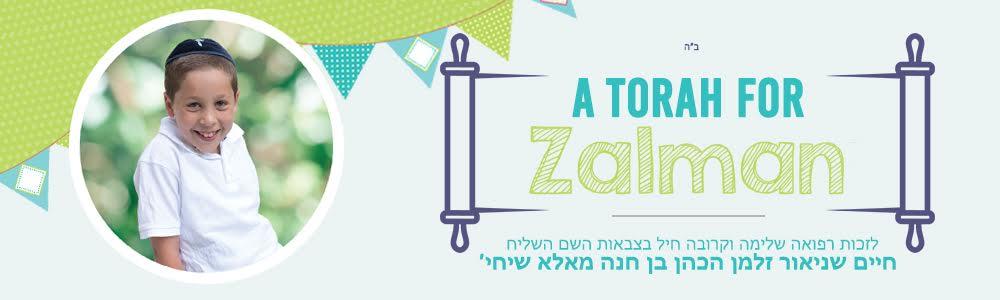 Chabad Palisades Torah Dedication