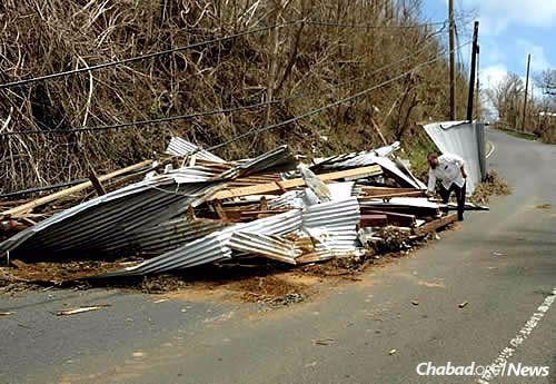 """The damage is unprecedented,"" says Federman."