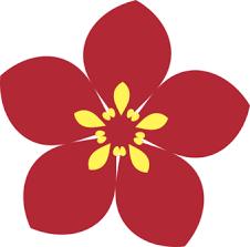 JWC logo.png