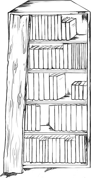 Fig. 22: A partition a handbreadth wide that covers part of a bookcase containing holy texts