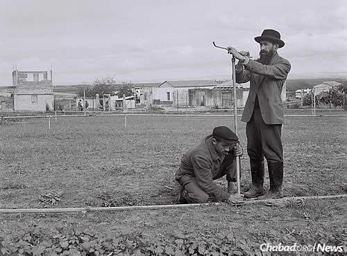 Kfar Chabad was built upon the ruins of an abandoned Arab village. Its early Chassidic pioneers worked hard to make the village habitable and create a place that would serve as an insipration for all of Israel. Here, Zalman Kaminezki, a Chabad Soviet refugee, works on installing a sprinkler system, circa 1949. (Photo: Zoltan Kluger/Israel Government Press Office)