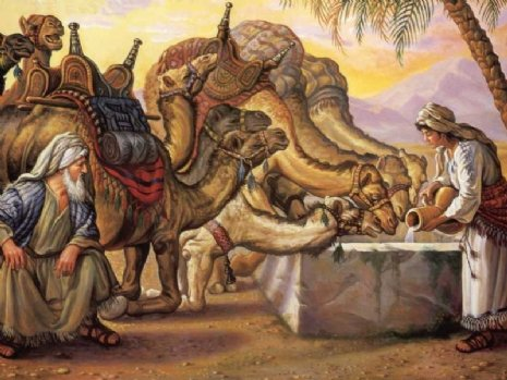 Camels at well.jpg