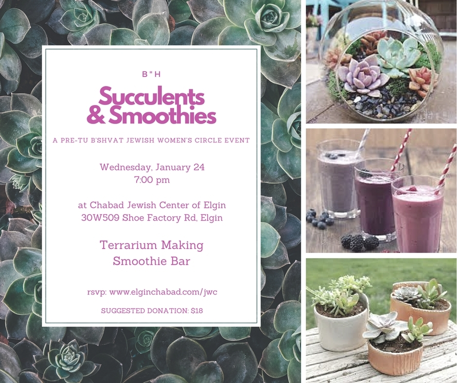 SUCCULENTS AND SMOOTHIES.jpg