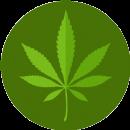 drug marijuana.png
