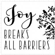 joy breaks all boundaries.png