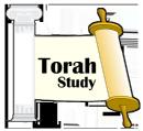 Weekly Torah Study