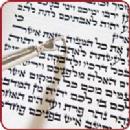 Congregation Beit Menachem