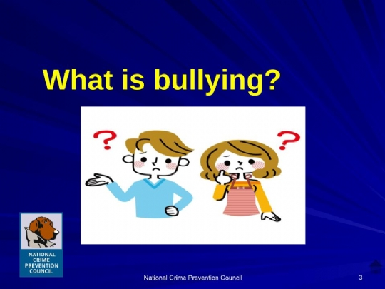 Bullying_For_Parents Maimonides.ppt (33).jpg