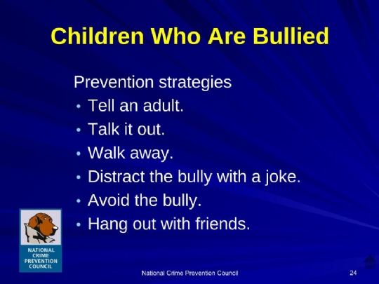 Bullying_For_Parents Maimonides.ppt (12).jpg