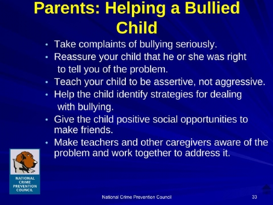 Bullying_For_Parents Maimonides.ppt (3).jpg