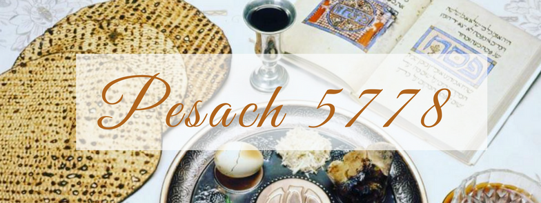 Copy of Pesach Banner 5778.png