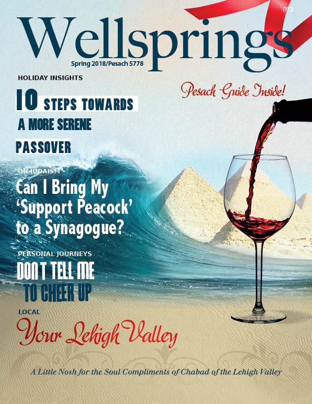 Chanukah 2016 Magazine.jpg
