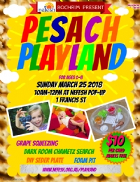 Pesach Playland