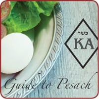 Pesach Product List