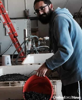 For wine to be considered kosher, the entire wine-making process must be handled or supervised by a Shabbat-observant Jew, from the time the grapes are crushed until the beverage is bottled.