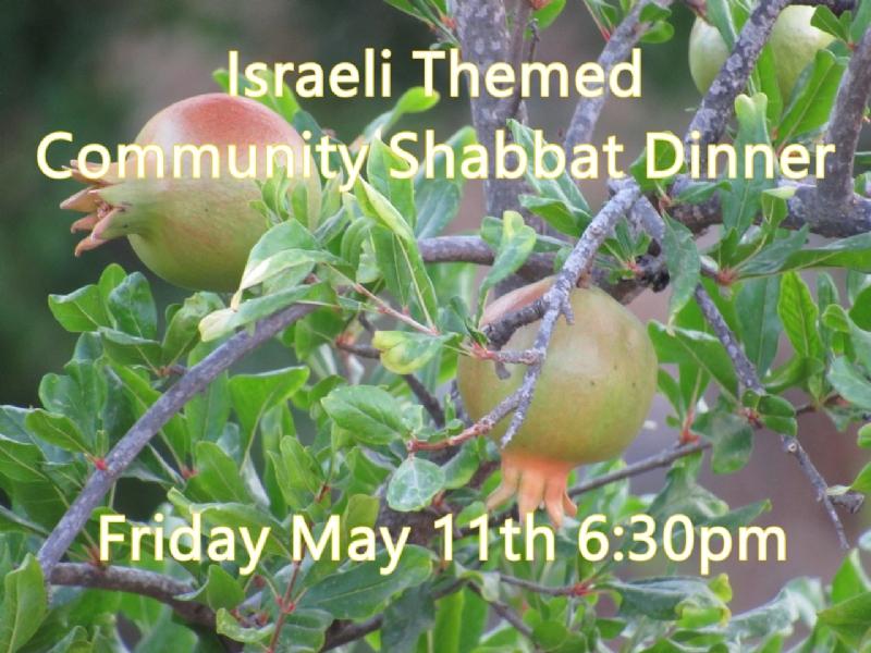 Israeli Themed Shabbat Dinner.JPG