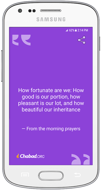 daily jewish quote app widget a new jewish quote each day