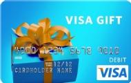 Visa-Card.jpg