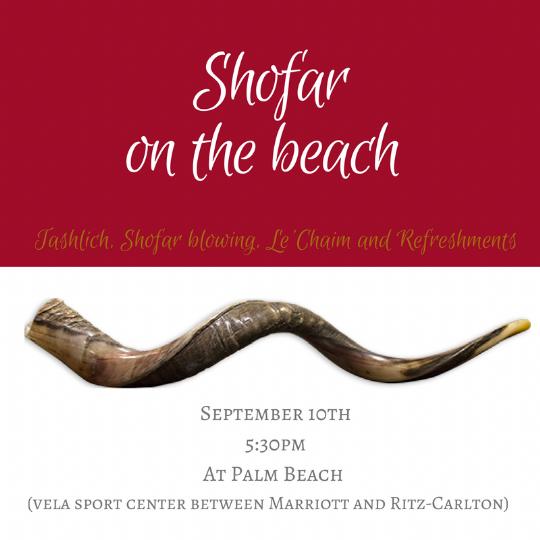 shofar on beach.png
