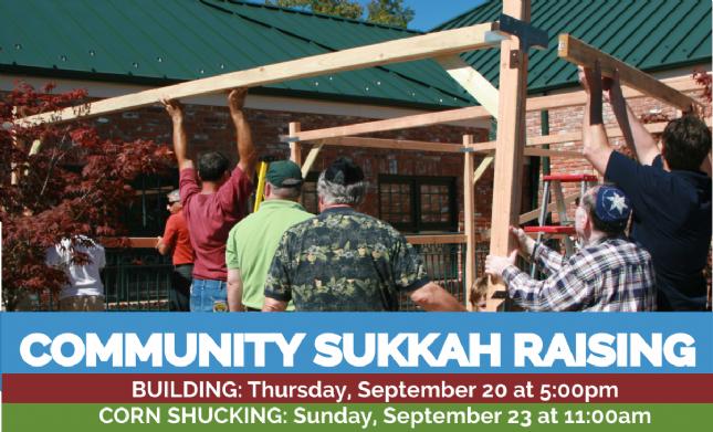 Sukkah Build Promo 18.png