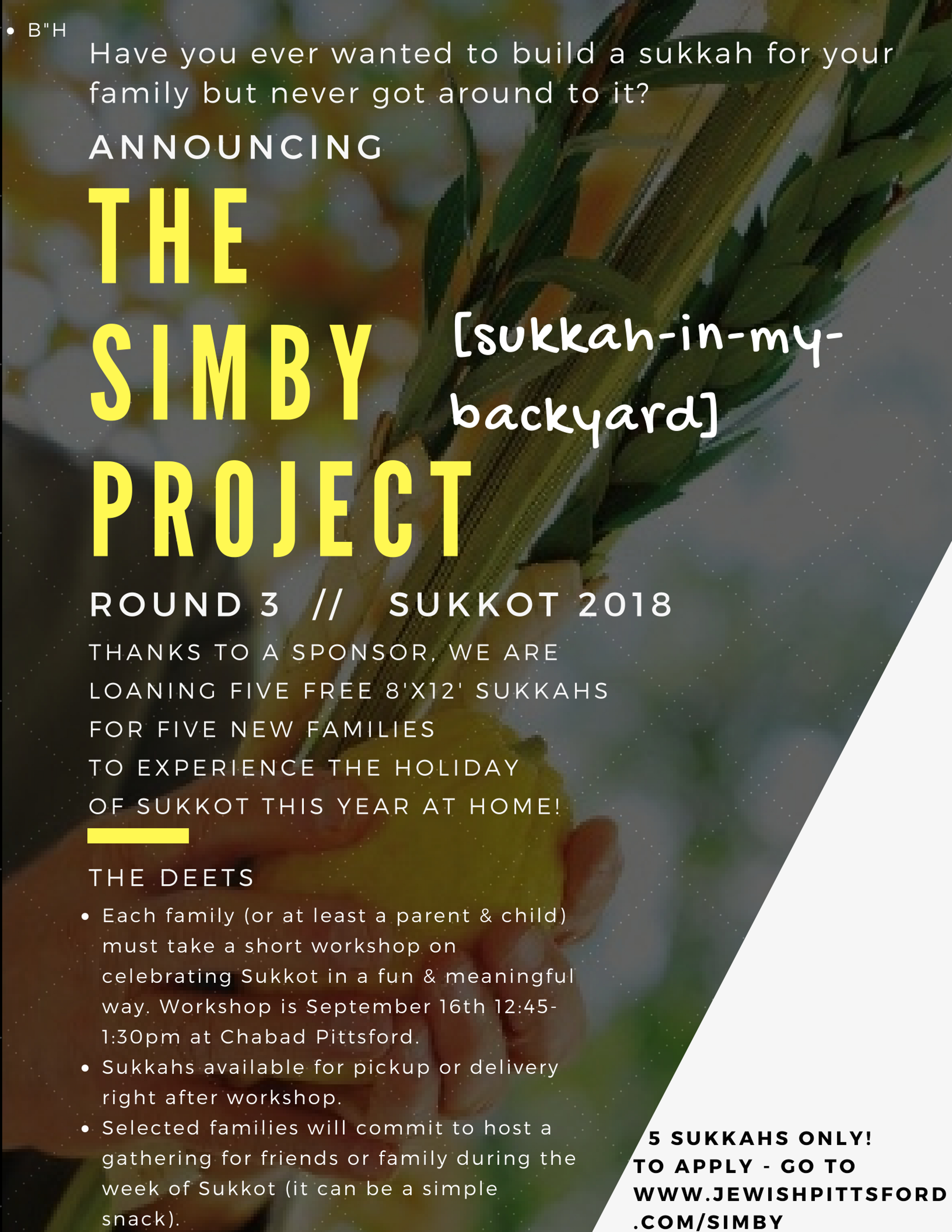 Copy of the sukkahproject.jpg
