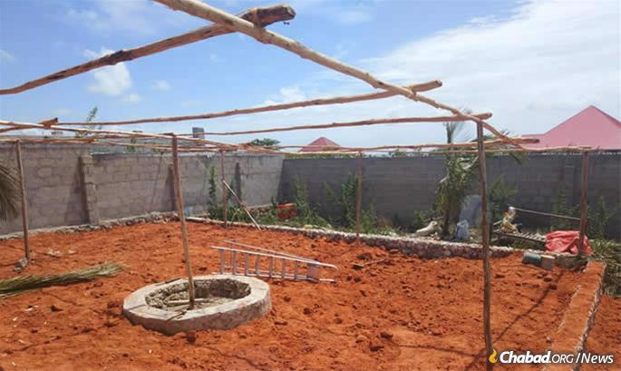 Last year's sukkah under construction.