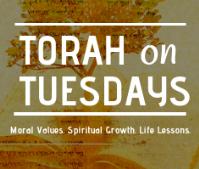 Torah on Tuesdays