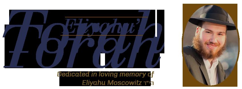 Eliyahu's Torah