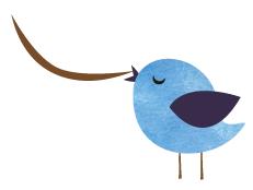 Bird S.png
