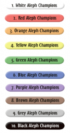 Yonkers-Hebrew-School-Aleph-Champions.png