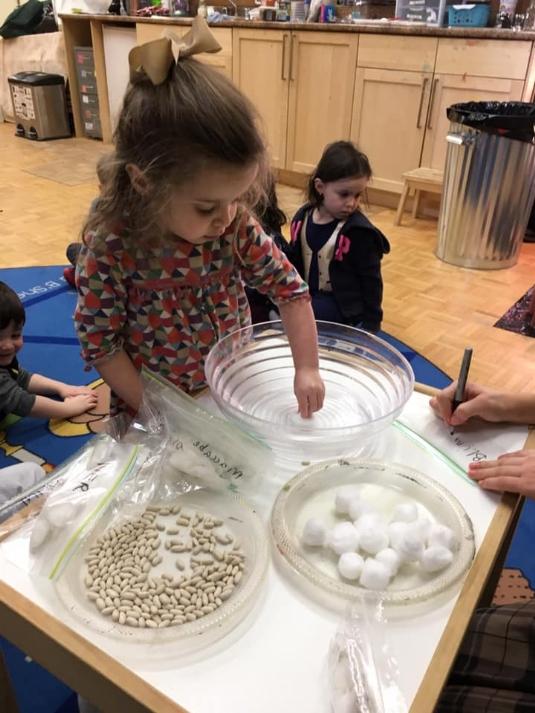 TB-planting preschool.jpg
